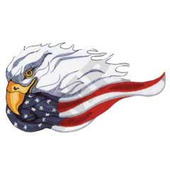 Eagle with USA Flag